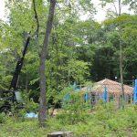 「北軽井沢の別荘」建て方始まりました