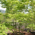 「北軽井沢の別荘」隠れ部屋