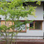 「北軽井沢の別荘」造園工事 一期工事完了